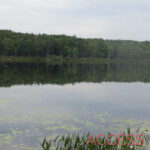 An overview of Lake Lacawac