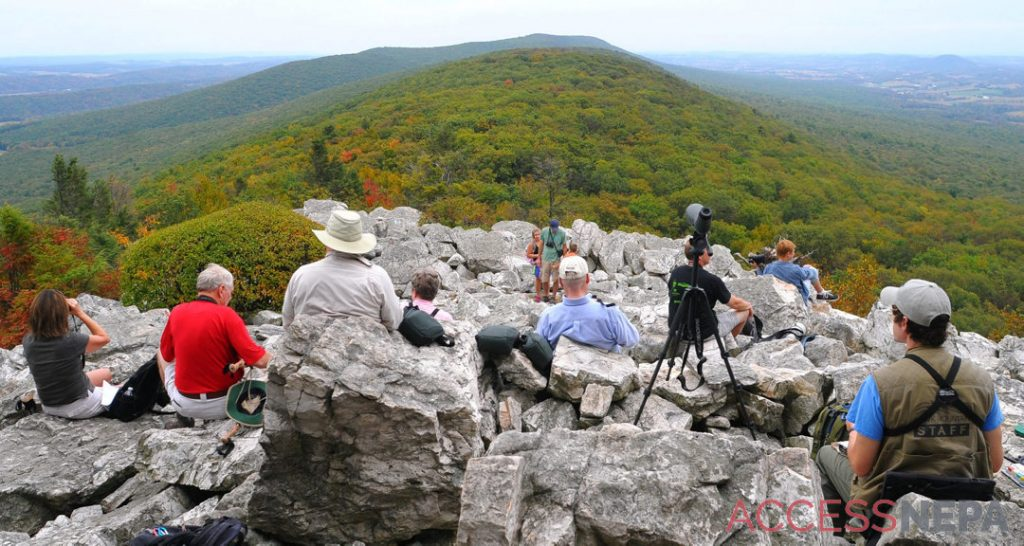 Top fall foliage spot: Hawk Mountain Sanctuary