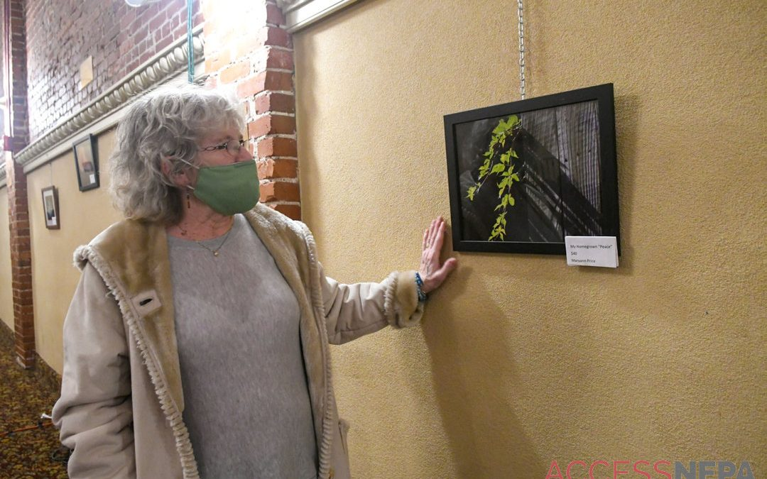 Maryanne Price photography exhibit on display